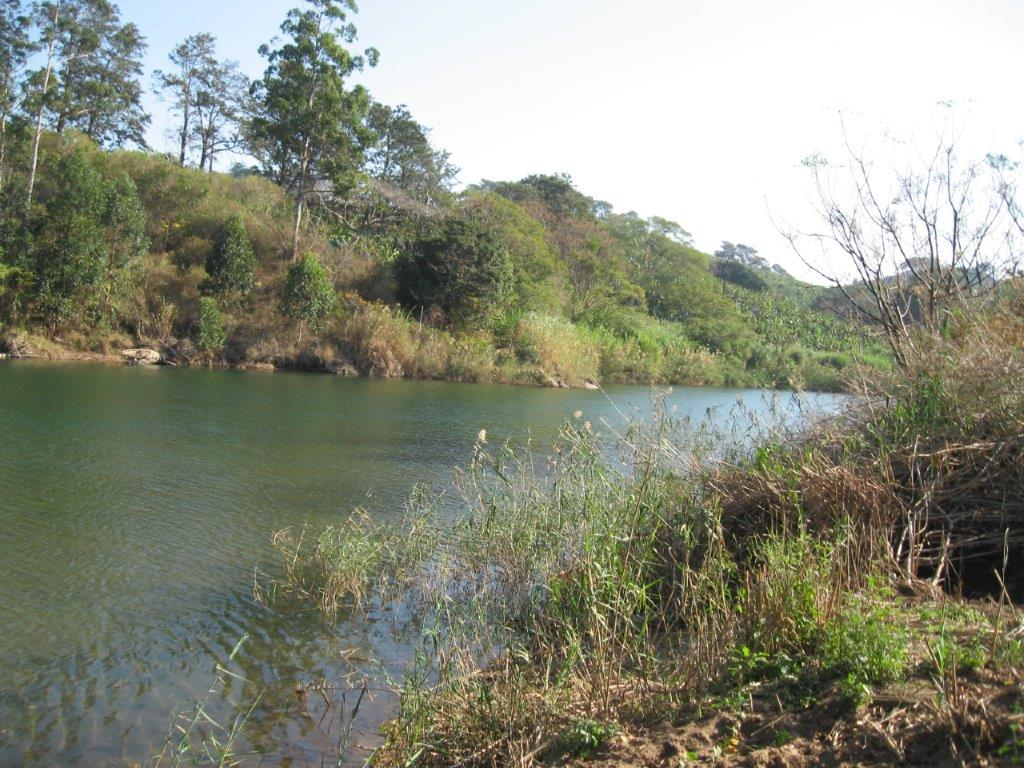 River Frontage stand