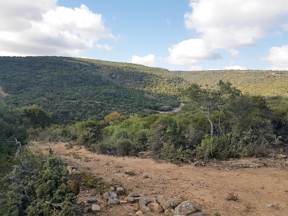 Farm for sale in Grahamstown ENT0030284 : photo#5