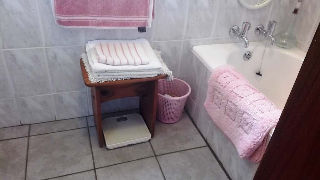 4 Bedroom House for sale in Garsfontein ENT0083808 : photo#19