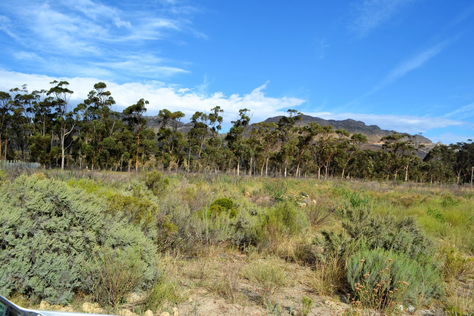 Vacant Land Residential For Sale In High Riding Country Estate