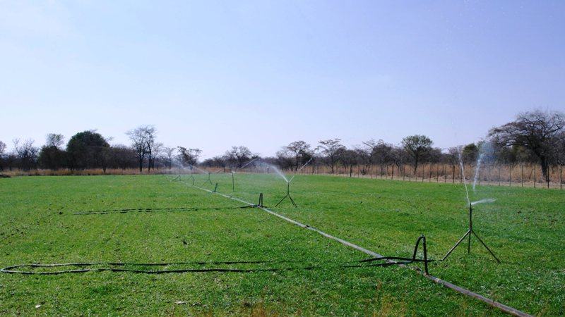 Farm for sale in Vaalwater ENT0049441 : photo#15