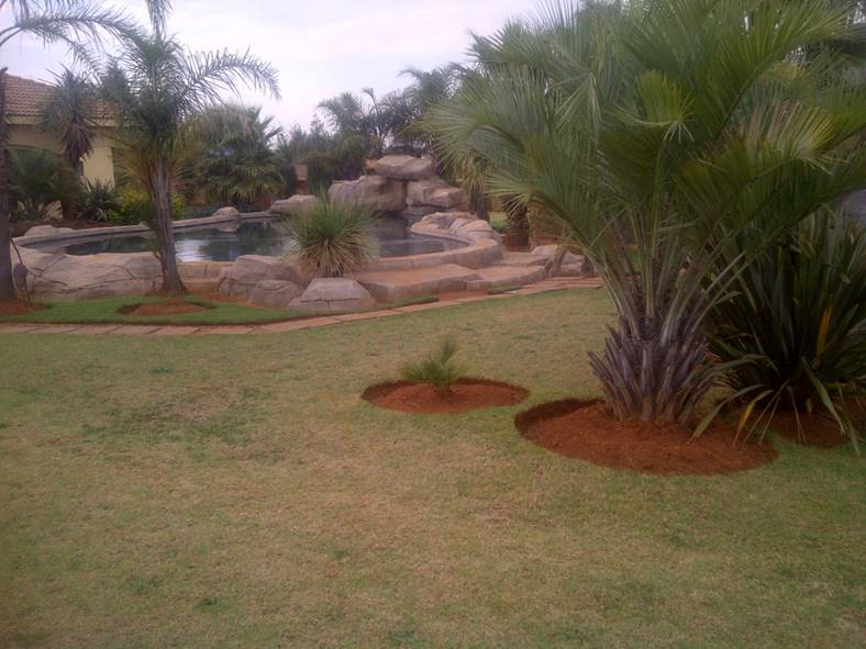 4 Bedroom House for sale in Grootfontein ENT0077759 : photo#7