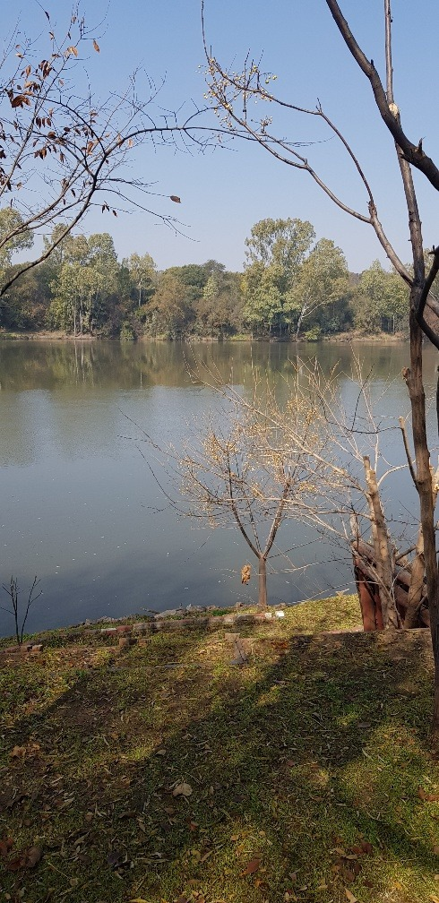 Beautiful, secure river front property, large plot, tranquil environment