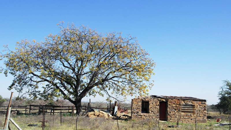 Farm for sale in Vaalwater ENT0032975 : photo#6